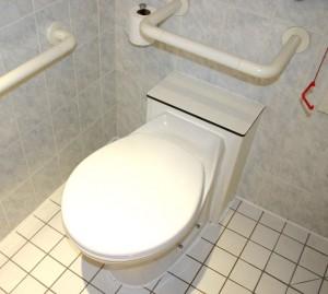 cs-toilet2